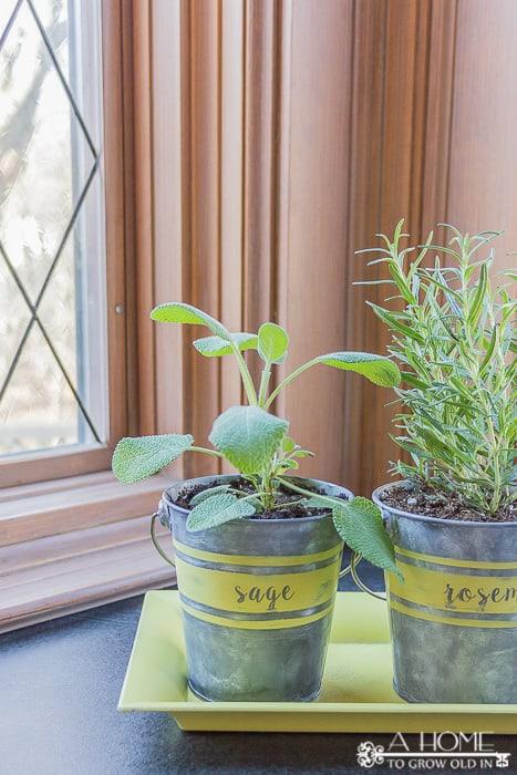 how to make a herb planter
