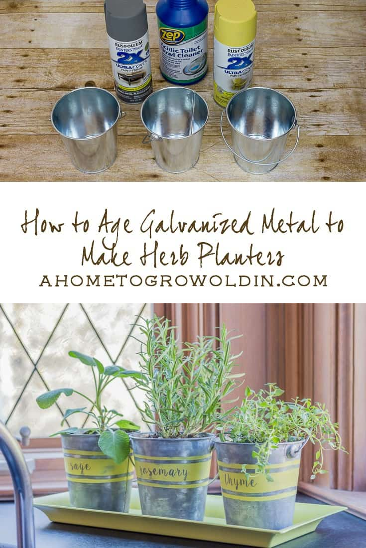herb planters pin