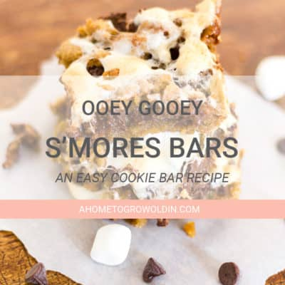 Ooey Gooey S'Mores Bars