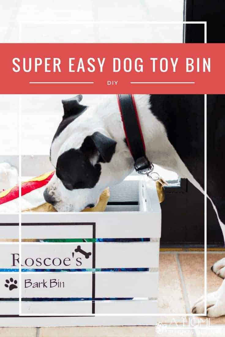 dog reaching for a toy from a pet toy box