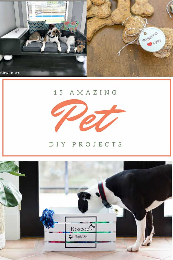 Check out these 15 amazing pet DIY projects for your cat or dog! There is everything from beds, bowl stands, and gates to homemade treats.