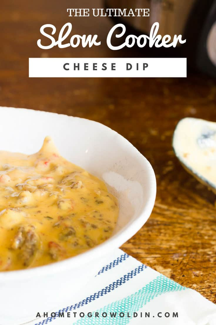 photo of slow cooker cheese dip