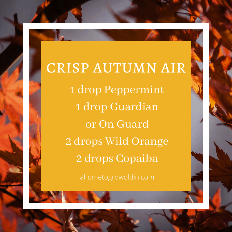 fall essential oil blends, peppermint, guardian, on guard, wild orange, copaiba
