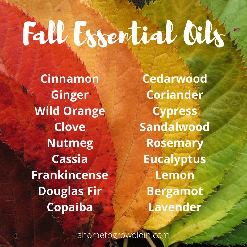 fall essential oil blends, cinnamon, ginger, wild orange, clove, nutmeg, cassia, frankincense, douglas fir, copaiba, cedarwood, coriander, cypress, sandalwood, rosemary, eucalyptus, lemon, bergamot, lavender
