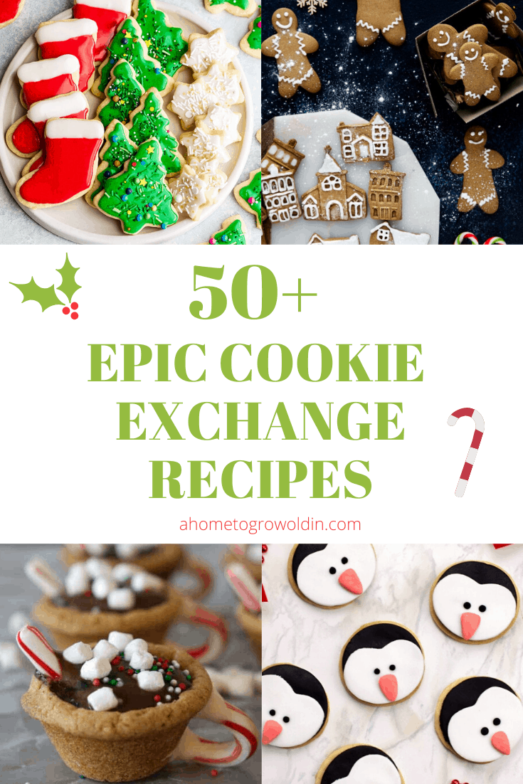 christmas cookie recipes with gingerbread, sugar cookies, penguins, and hot chocolate