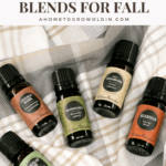 fall essential oil blends, cinnamon, douglas fir, frankincense, guardian, cedarwood