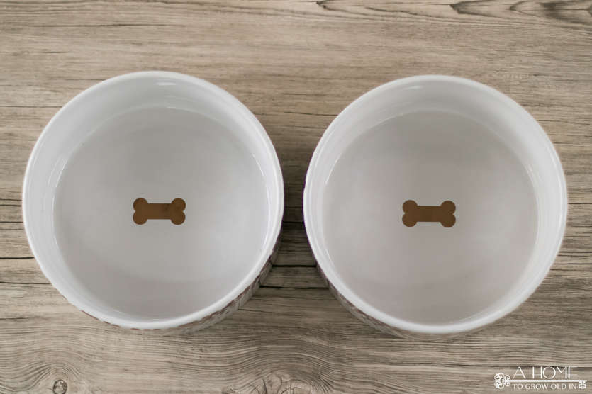 overhead shot of two dog bowls