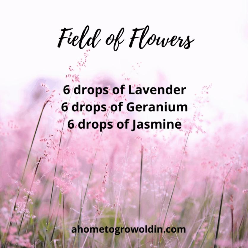field of flowers essential oils lavender, geranium, jasmine